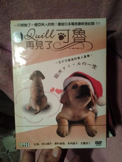 盲導犬クイールの一生 (沢口靖子出演) DVD-BOX