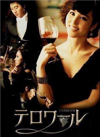 テロワール DVD-BOX I+II ディレクターズカット版