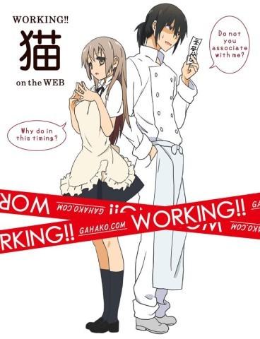 WORKING!! DVD-BOX
