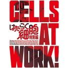 はたらく細胞 1+2+3+4+5+6+7+特別編 (完全生産限定版) Blu-ray BOX 全巻